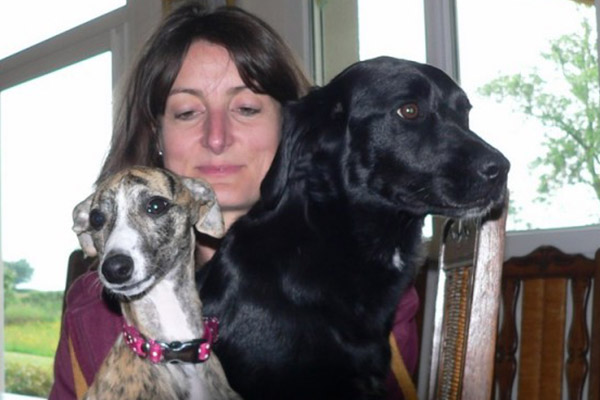 famille-whippet-labrador-elwood-meadows