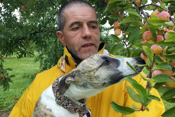 mirabelle-alsace-westhoffen-whippet-elwood-meadows